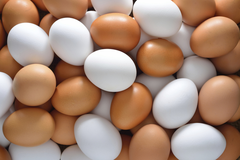 best foods for building muscle - Eggs